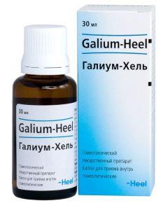 Buy Galium-Hel 30 ml drops | Online Pharmacy | https://buy-pharm.com
