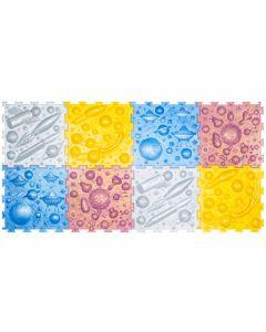 Buy Cosmos - massage rugs set (8 puzzles) | Online Pharmacy | https://buy-pharm.com