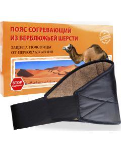 Buy Azovmed Anti-radiculite warming belt made of camel hair. Size 5 / XL (58-60) | Online Pharmacy | https://buy-pharm.com